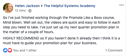 Helen Jackson Promote like a BOSS Review