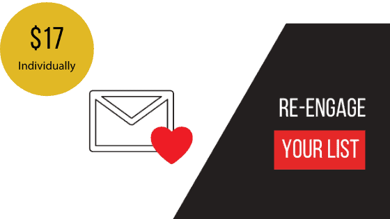 Re Engage Your List Email Sequence Template