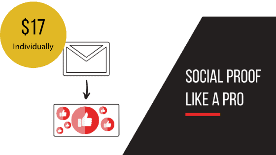 Social Proof request Email Sequence Template