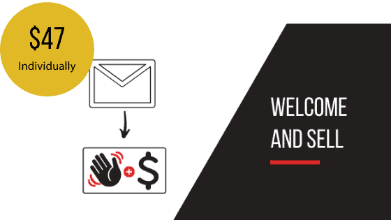 Welcome and Sell Email Sequence Template
